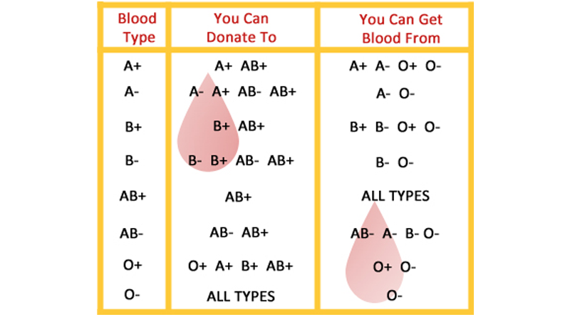 how to get your blood type for free