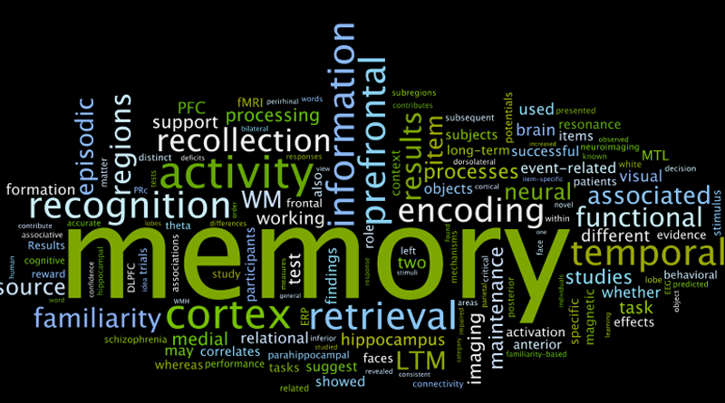 remembering to remember memory and brain development psychology essay Psychology essay example: false memories the formation of memories has always been a topic of our brain's capability to dramatically alter the real events in our perception post factum allows us to it is important to remember that people's memories of actual events are always modified to.