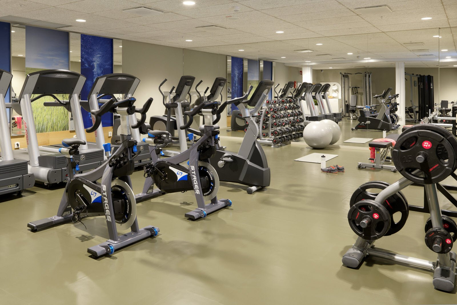 Why Is A Gym Insurance Necessary To Keep Your Gym 'Fit ...