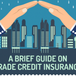 A Brief Guide on Trade Credit Insurance